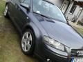 Polovni automobil - Audi A3 2.0 TDI quatro - 2